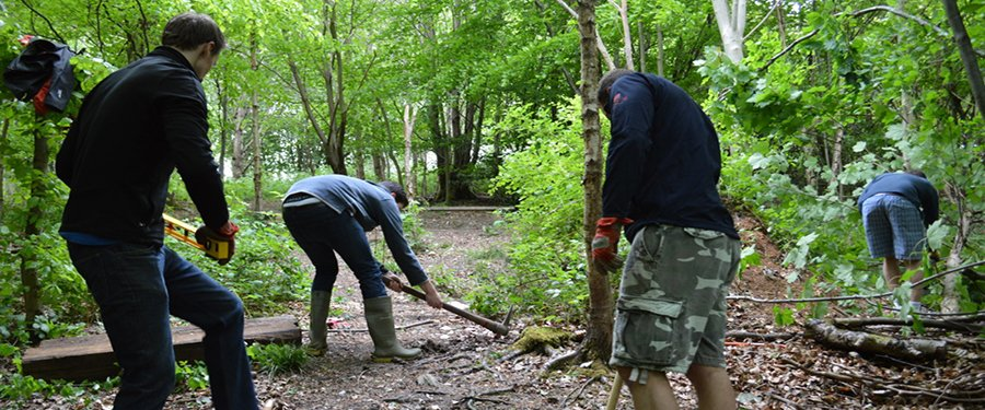 Chiltern rangers working in the woods